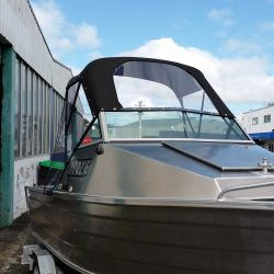 Runabout Canopy