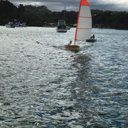 Dinghy Sail